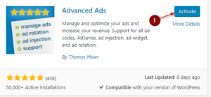 Adsense Auto Ads WordPress