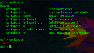 Metasploit Workspaces