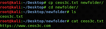 The Linux Copy File Command